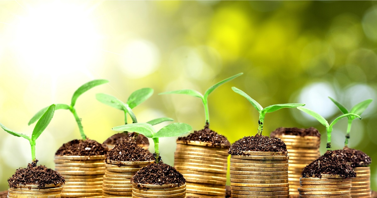 best investment company for small investment